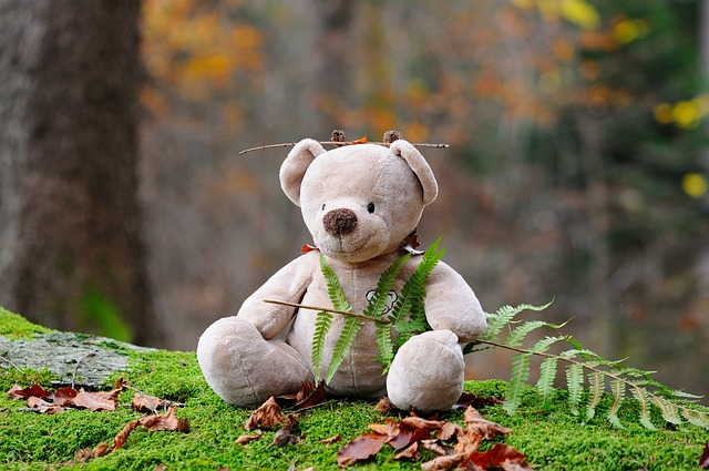 teddy-bear-524251_640.jpg