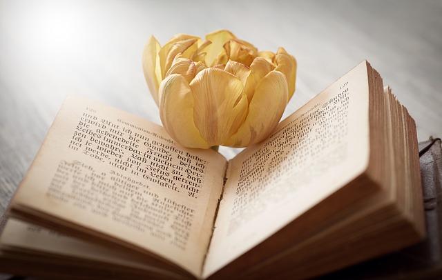 book-1325088_640.jpg
