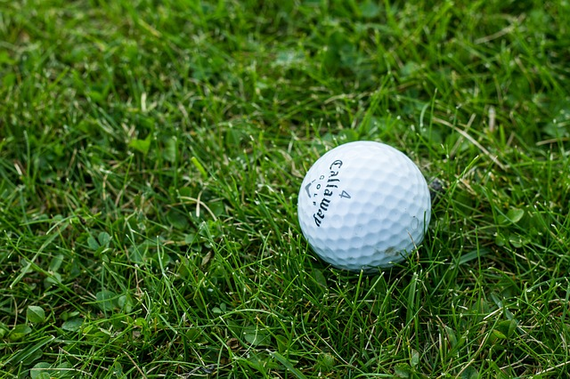 golf-1869983_640.jpg